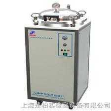 LDZX-30FA 30升LDZX翻盖式不锈钢立式灭菌器