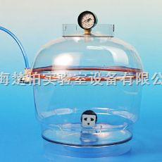 250-4 配真空表 真空腔体/塑料真空容器(可放入仪器)
