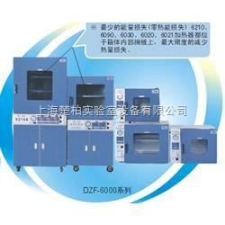 DZF-6051 一恒DZF系列真空干燥箱