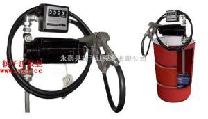 油泵厂家:防爆计量油桶泵