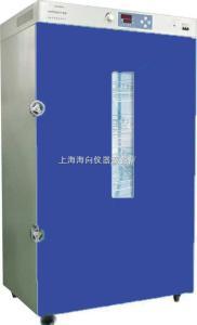 定制性电热鼓风烘箱DHG-9920