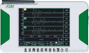 M320325  锚杆无损检测仪/锚杆质量检测仪 型号:ZX7M-RSMRBT库号:M320325