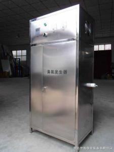 BH-100G 水消毒设备  臭氧