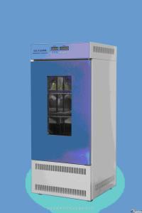 QZ 人工气候箱,人工模拟气候箱