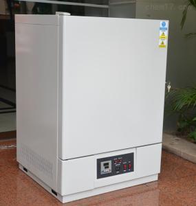高温试验箱 工业烤箱 精密加温烘箱