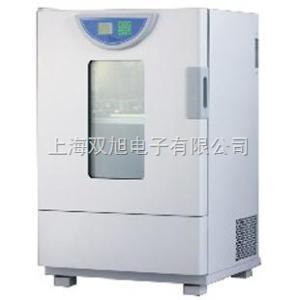 BHO401A BHO-401A老化试验箱