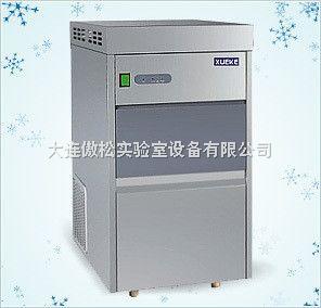 IMS-250 IMS-250雪花制冰机