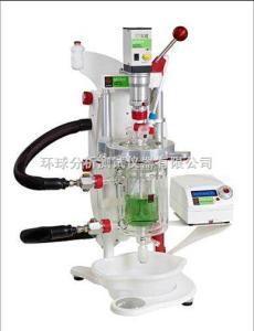 Globe化學合成反應器