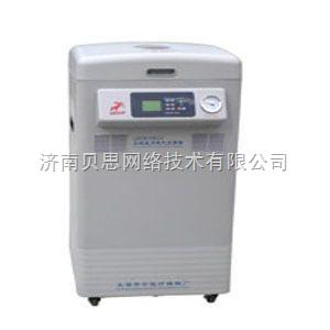 立式真空干燥灭菌器LDZM-80KCS
