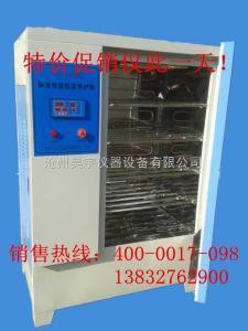 20组、40组、60组恒温恒湿标准养护箱价格