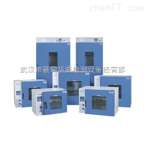HW-DHG-9920A 武汉烘箱/干燥箱