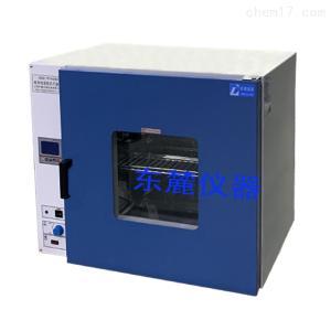DHG-9123AD 上海智能控温恒温干燥箱