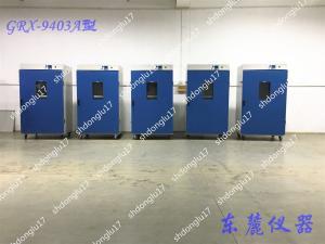 GRX-9603A 控温热空气消毒箱