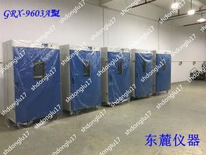 GRX-9403A 厂家批发热空气消毒箱