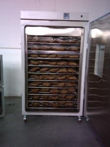 DGG-9920A 烤瓜子烘箱批发商