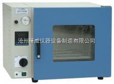 DZF型 DZF型  真空干燥箱