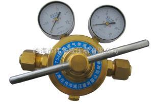氮气减压器YQDG-754