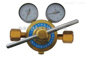 管道氧气减压器YQJ-11A单级双表
