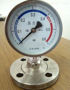 YTP-100隔膜耐震压力表