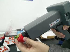 HSXD-1100 果品黑心病无损检测仪-近红外无损分析仪