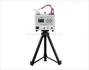 XY-2000(E)型24小时恒温双路大气采样器