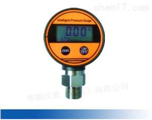S-100 S150數字顯示壓力表