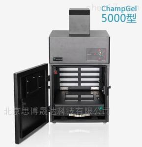 ChampGel™ 5000 plus 凝胶成像分析系统